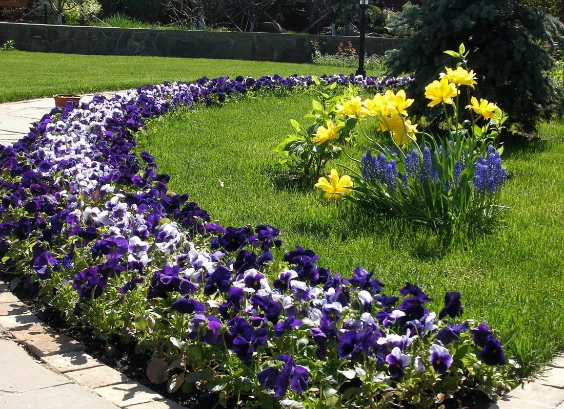 Клумбы рабатки в ландшафтном дизайне садового участка